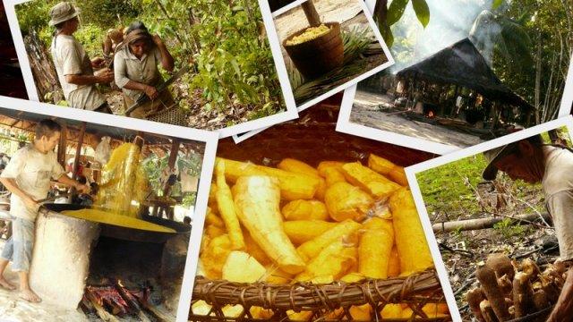 Mandiokaverarbeitung im Verlauf: Tragen, schälen, einweichen und schlussendlich trocknen im Casa da Farinha.