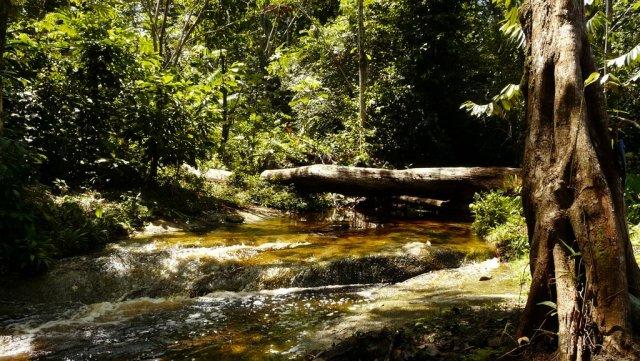 In diesem Fluss hat Bu'ú uns gezeigt, wie man Wasser schlägt.