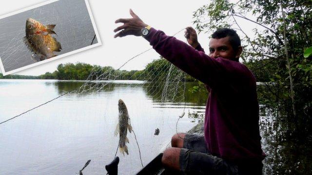 Unser erfolgreicher Fischer auf einem Inselsee im Rio Negro, beim morgendlichen Angeln.