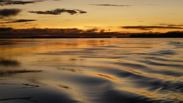 Der Rio Negro bei Sonnenaufgang