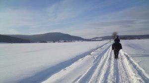Heimfreude: Nur in Deutschland gibt es Winter. Die Zeit zum Nachdenken, reflektieren und gemütlich Zusammensein.