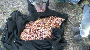 Da kein Kochtopf zur Hand ist, wird der Obstsalat einfach in die wasserdichte Zeltplane geschnippelt. Eine geistige Schranke weniger.