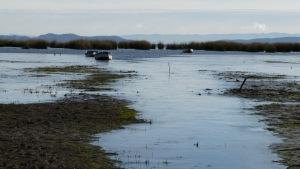 Zugefrohrenes Ufer des Titicacasees. Baden ist auch auf Grund des tiefen Matsches unter der Eisschicht unmöglich